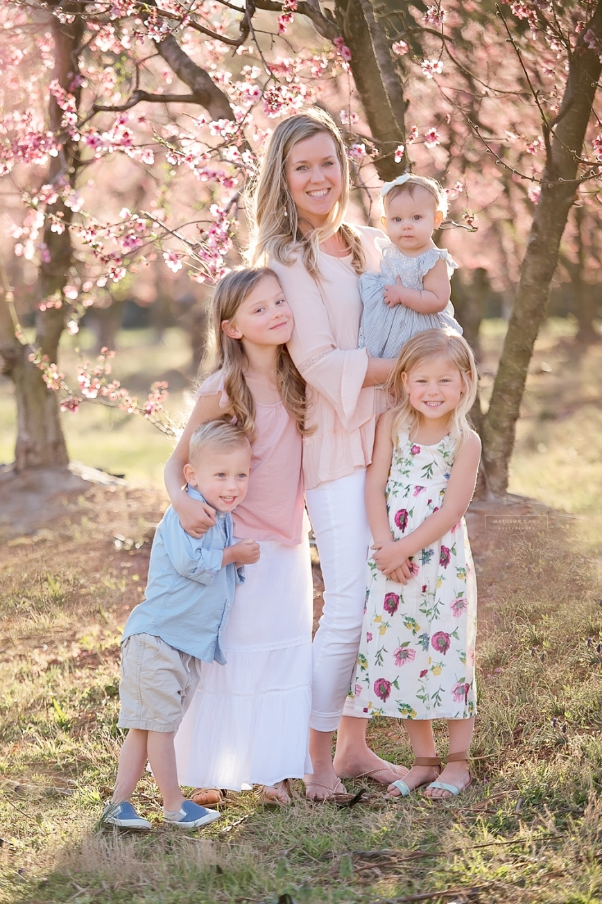 fort mill peach blossom family photographer_0149