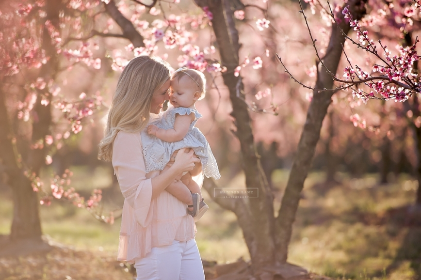 fort mill peach blossom family photographer_0150